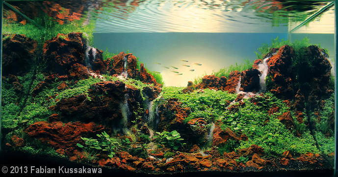 'Seven Falls' aquascape by Fabian Kussakawa